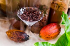Cocoa Beans in glass and Cocoa Fruits on Sack and wooden bucket. royalty free stock photography