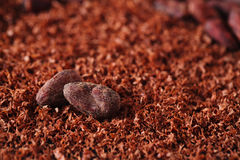 Cocoa beans and grated chocolate background Stock Photography