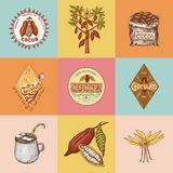 Cocoa beans and hot chocolate logos. modern vintage badges for the shop menu. Seeds of fruit on the plantation. Calligraphy style for frames, labels. farm Royalty Free Stock Images