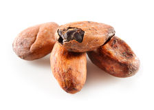 Cocoa beans isolated on white Stock Photography