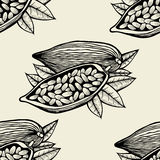 Cocoa beans and leaves Stock Image