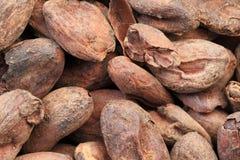 Cocoa beans macro Stock Photos