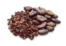 Cocoa Beans with nibs . Stock Images