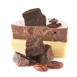 Cocoa beans, organic cocoa butter (oil) , chocolate and cocoa powder Stock Images