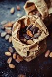 Cocoa beans Royalty Free Stock Photos