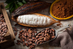Cocoa beans and pod stock image