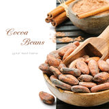 Cocoa beans and powder Stock Photo