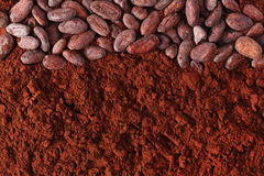 Cocoa beans and powder background Stock Photo