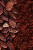 Cocoa beans and powder background Royalty Free Stock Photo