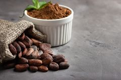 Cocoa beans and powder stock images