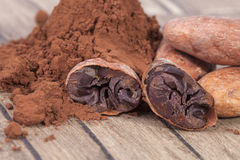 Cocoa beans and powder on wooden plank Stock Photos
