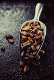Cocoa beans in a  scoop Royalty Free Stock Photography