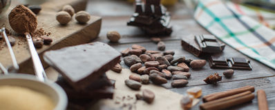 Cocoa beans Royalty Free Stock Photo