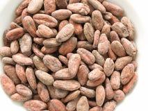 Cocoa beans Stock Photos