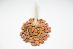 Cocoa beans. On white background Stock Image
