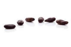 Cocoa beans. Stock Photo