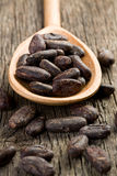 Cocoa beans in wooden spoon Stock Photography