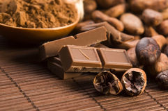 Free Cocoa (cacao) Beans Royalty Free Stock Images - 25253999