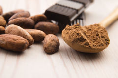 Cocoa ( cacao ) beans with chocolate Royalty Free Stock Photos
