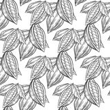 Cocoa, cacao beans hand drawn sketch seamless vector pattern.  Stock Photos