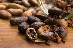 Cocoa (cacao) beans on natural wooden table Royalty Free Stock Photo