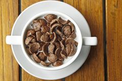 Cocoa cereal in white cup Royalty Free Stock Images