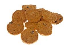 Cocoa chocolate cookies Stock Photo