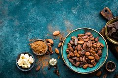 Free Cocoa. Cocoa Beans, Dark Bitter Chocolate Chunks, Cacao Butter And Cocoa Powder Stock Images - 125577824