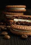 Cocoa cookies with coffee beans close-up Stock Photography