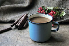 Cocoa and cookies Stock Photography