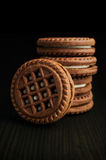 Cocoa cookies Royalty Free Stock Photography