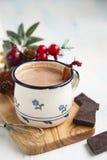 Cocoa drink with cinnamon Stock Photos