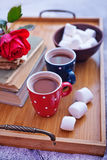 Cocoa drink in cups Stock Images