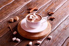 Cocoa drink with marshmallows and cinnamon stock photo
