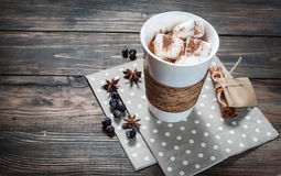 Cocoa drink with marshmallows and cinnamon stock photos