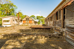 Cocoa Farm in Grenada, Caribbean Royalty Free Stock Images