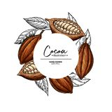 Cocoa frame. Vector superfood drawing template. Fruit, leaf and bean engraving. Organic healthy food. Sketch. Hand drawn chocolate packaging, cacao banner royalty free illustration