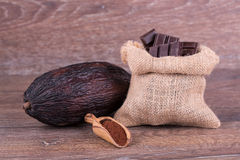 Cocoa fruit Stock Photography