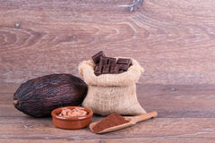 Cocoa fruit Stock Images