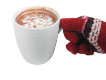 Cocoa In Hand Stock Photography