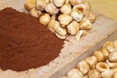 Cocoa and hazelnuts Stock Photos