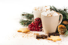 Cocoa with marshmallow, chocolate, cinnamon and fir branches Stock Photography