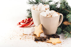 Cocoa with marshmallow, chocolate, cinnamon and fir branches Royalty Free Stock Photo