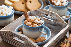 Cocoa with marshmallows, cinnamon and spices on a wooden tray Royalty Free Stock Image