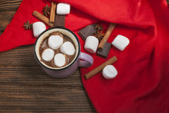 Cocoa with marshmallows and cinnamon sticks. Top view. Selective focus Royalty Free Stock Images