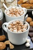 Cocoa with marshmallows and cookies, vertical Stock Photo