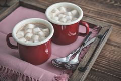 Cocoa with marshmallows Royalty Free Stock Photography