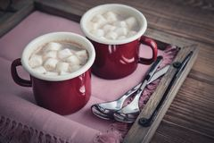 Cocoa with marshmallows Royalty Free Stock Image