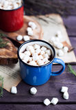 Cocoa with marshmallows in winter time Stock Photos