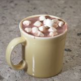 Cocoa with Marshmallows Stock Image